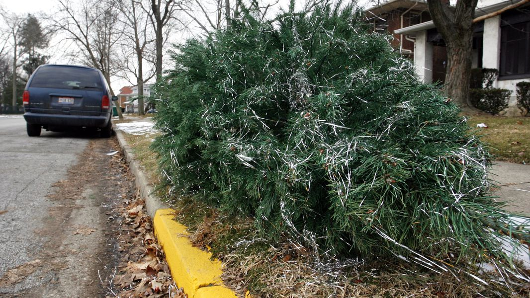Where (and how) to recycle your Christmas tree in Gwinnett