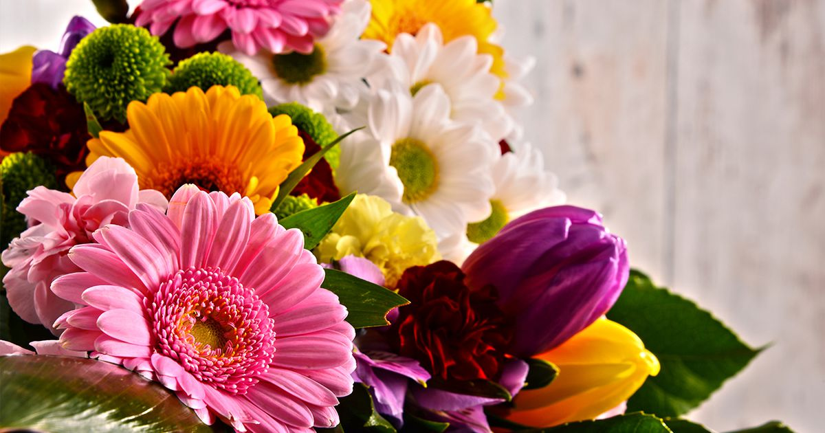 Mother's Day quotes: What can you say about mom? A lot.