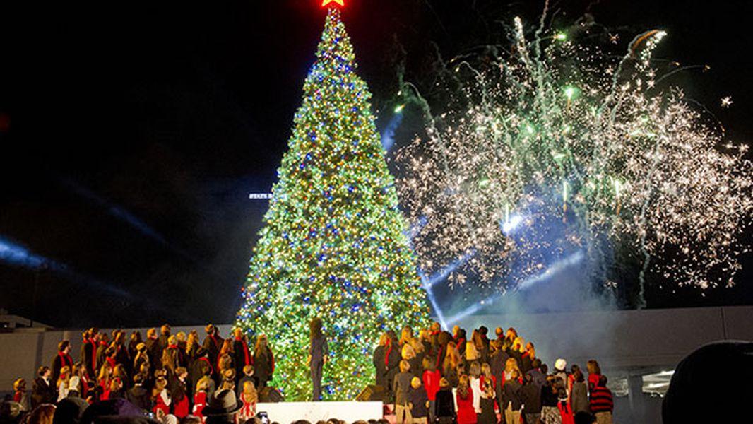 Christmas Treelighting On The Mall Nov 28 2020 Ice skating rink, Christmas tree coming to Marietta Square