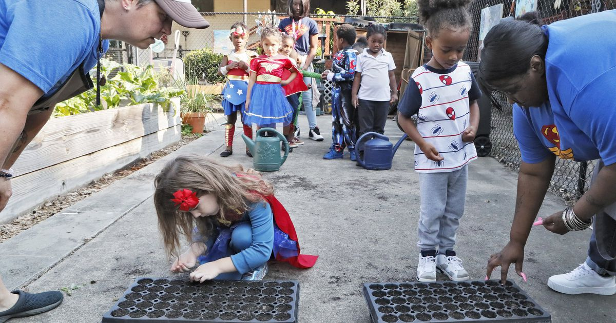 Forest Park preschool farm stand clears final hurdle to sell produce